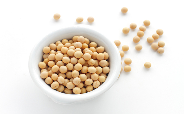 Soy bean in white ceramic bowl